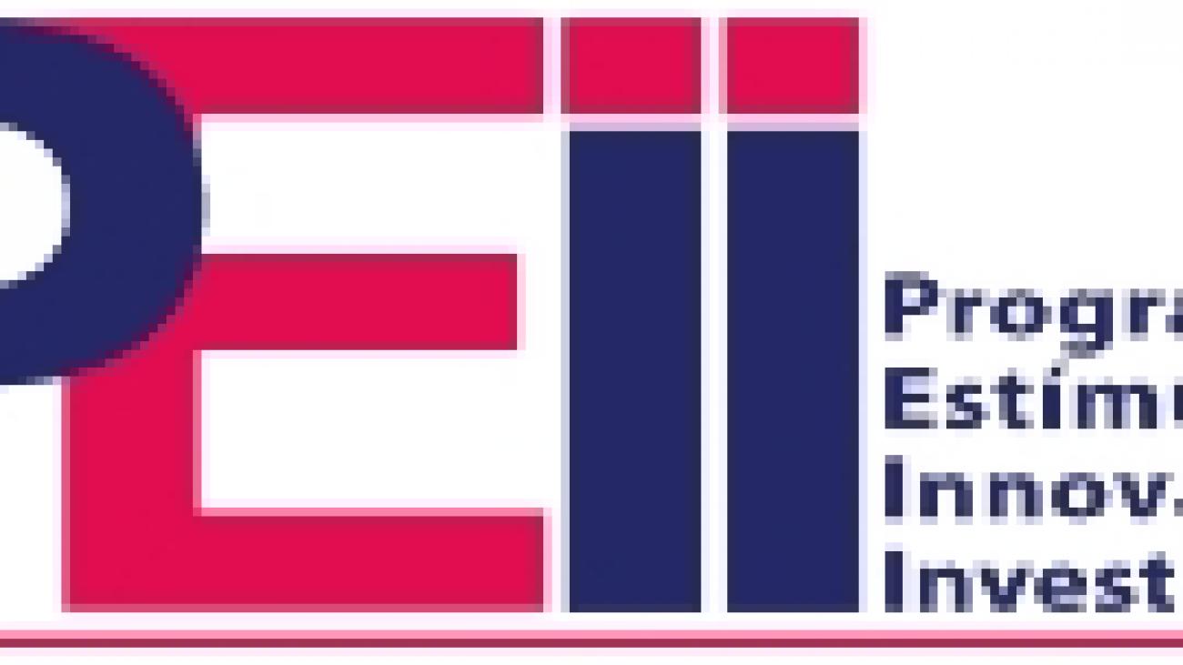 Logo PEII